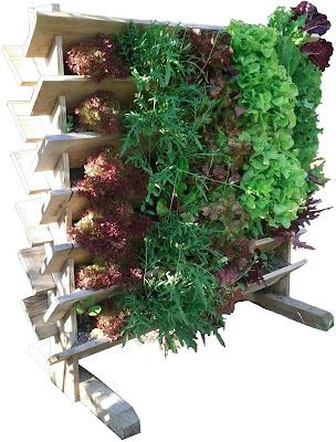 silvicultrix nachhaltig handeln vertikal garten. Black Bedroom Furniture Sets. Home Design Ideas