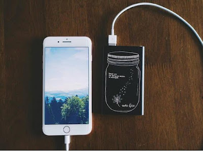'Dandelion in Mason' Power Bank