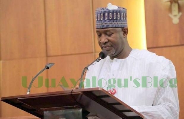 BREAKING: FG suspends national carrier, Nigeria Air indefinitely