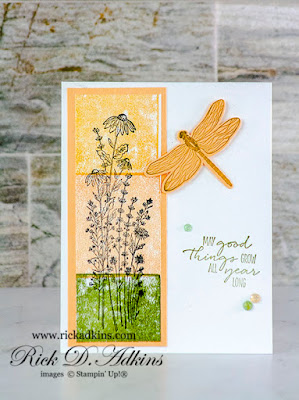 Check out my card today using an unexpected coloring technique and the Dragonfly Garden Stamp Set from Stampin' Up!  Click here to learn more