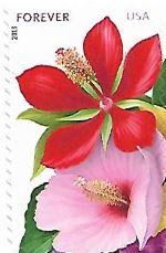 Selo Hibiscos vermelho e rosa