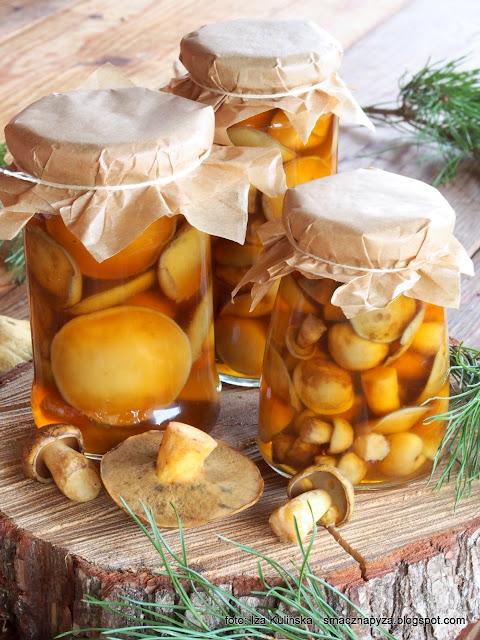 grzybki w occie, grzyby marynowane, maslak pstry, maslaczki, jakubki, miodowki, pociechy, muchowiki, marynata, ocet jablkowy