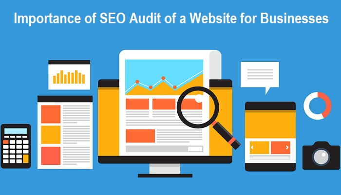 SEO Audit of a Website
