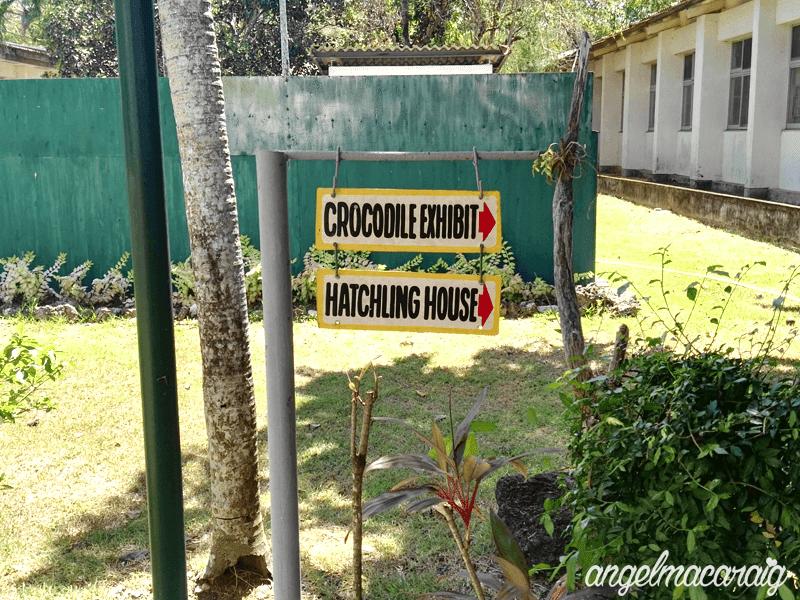 Crocodile Exhibit & Hatchling House