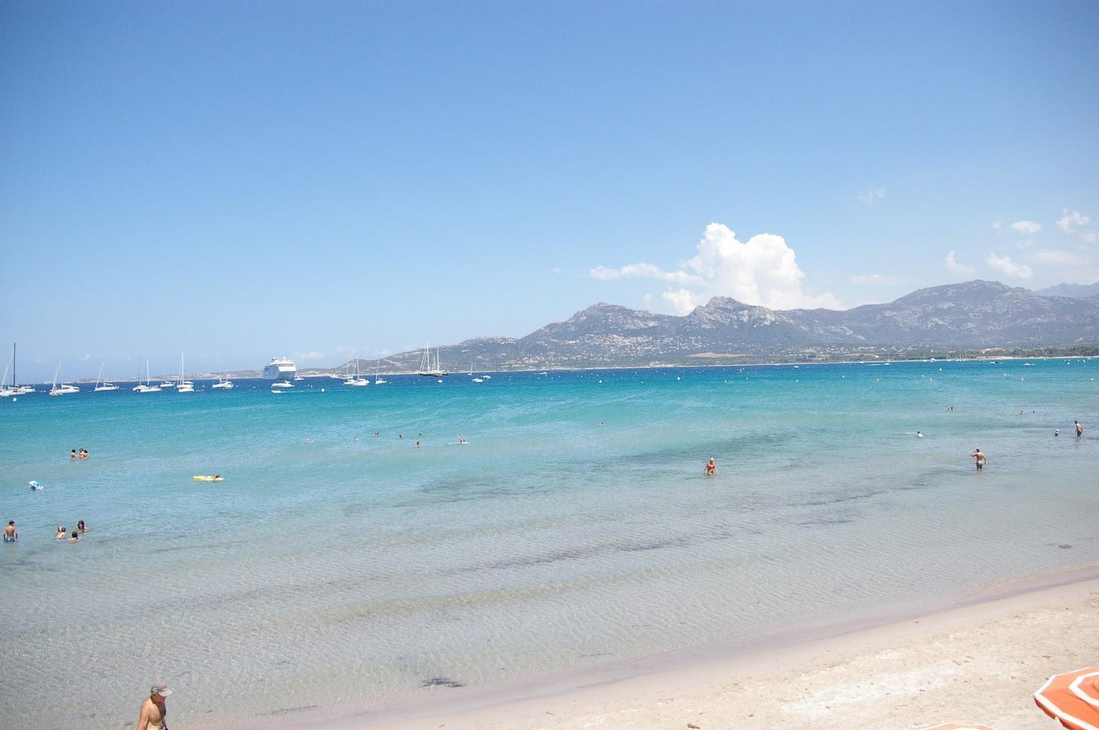 Korsyka plaża Calvi