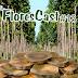 FloresCast #13 - Mogno Africano, o novo 'ouro verde'