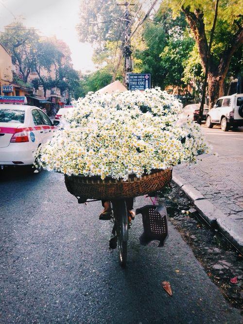 #blog #bemestar #wellness #flowers #lifestyle #estilodevida