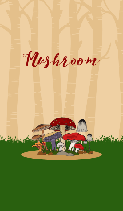 Mushroom Colorful