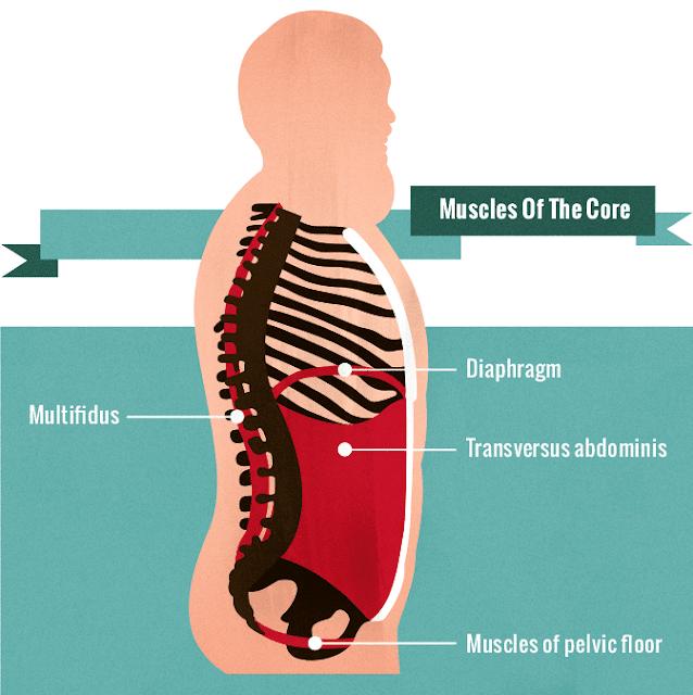 超級核心肌群論壇之: 為什麼有六塊腹肌仍會下背痛?