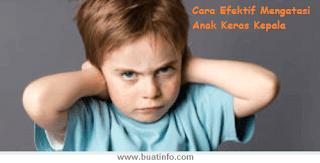 Buat Info - Cara Mengatasi Anak yang Keras Kepala