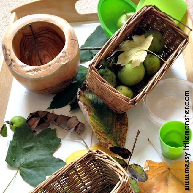 Autumn (Fall) nature table for kids. A simple activity for toddlers and preschoolers.