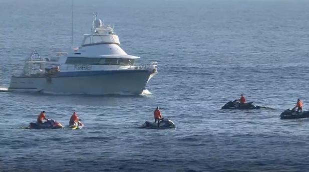Blog Visão Surubim: Tubarão força paralisação de etapa do Mundial de