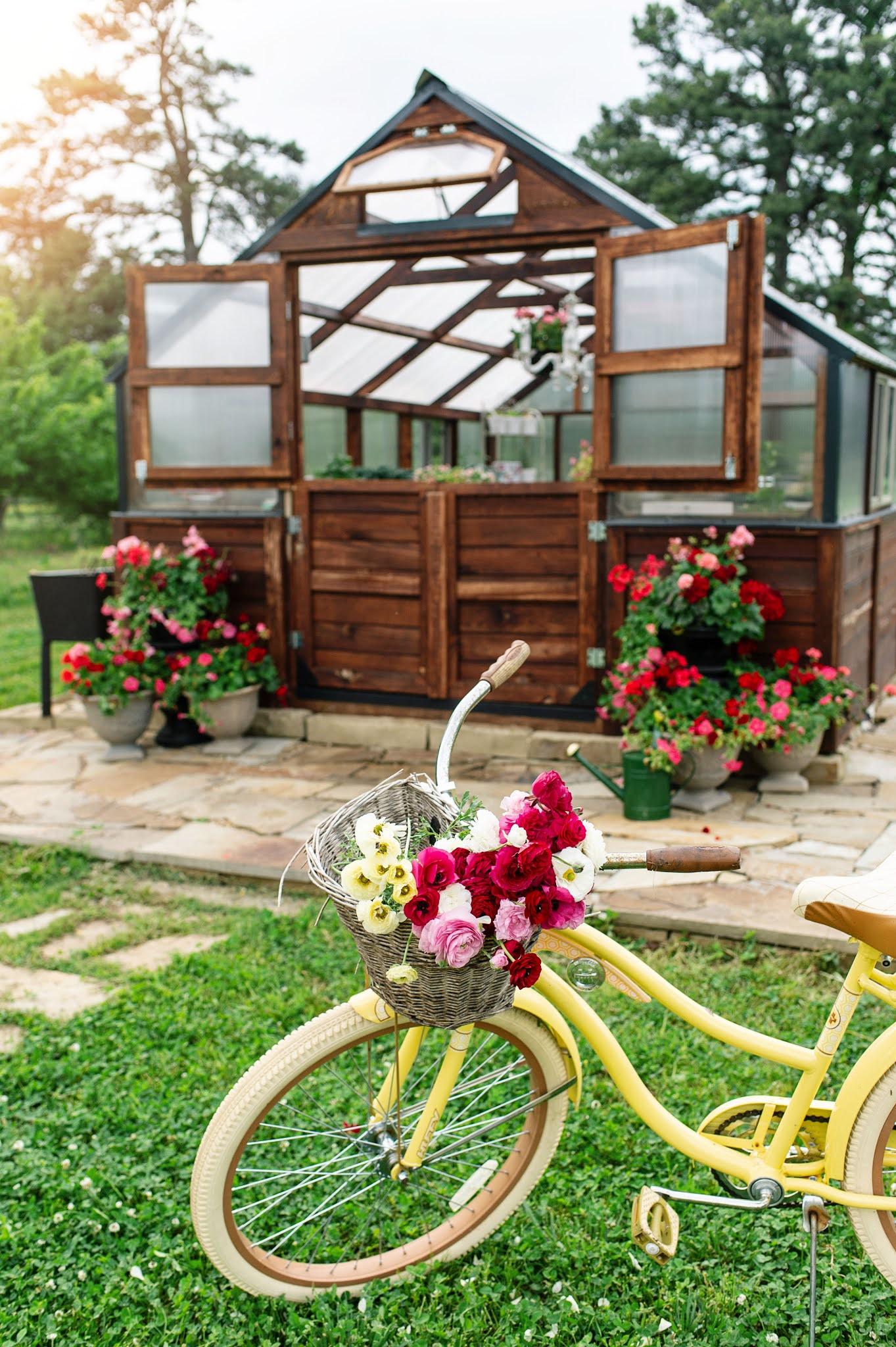 Yoderbilt Greenhouse Vintage Bike