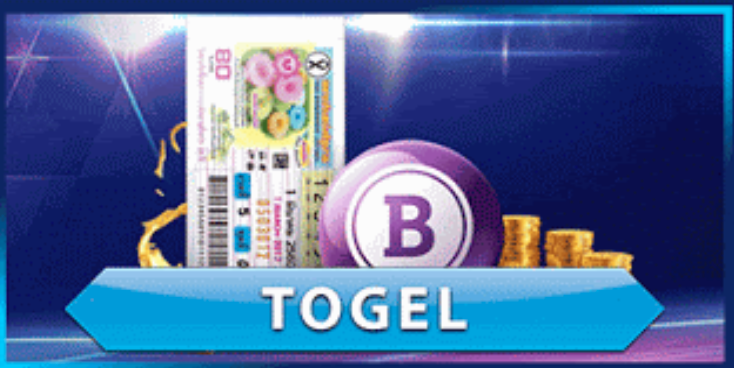 Togel Is the Most Popular Lottery Game