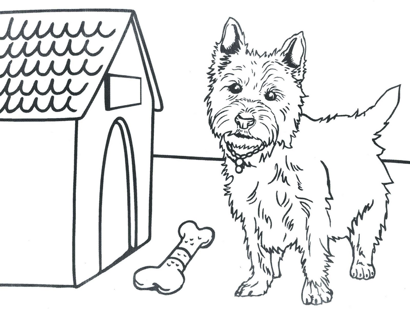 Craft And Activities For All Ages Westie Calendar For