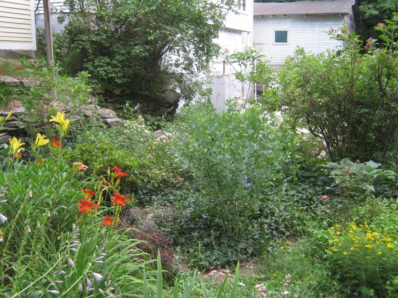 Hilltop Gothic Garden Goals