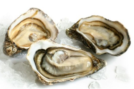 Oyster during Osteopenia diet