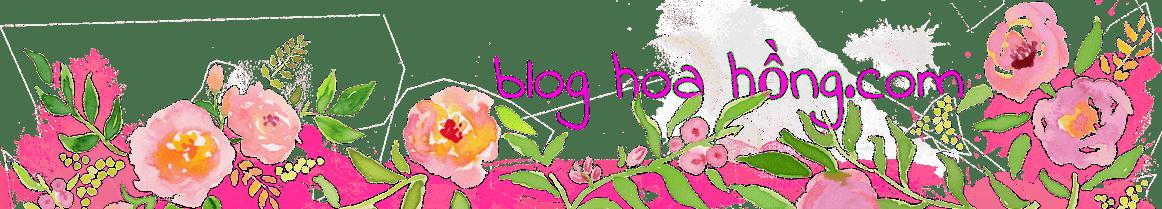 Blog hoa hồng sắc màu tình yêu tới muôn nơi
