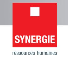 synergie se dividende exercice 2017