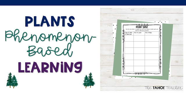 plants-phenomenon-based-learning-unit