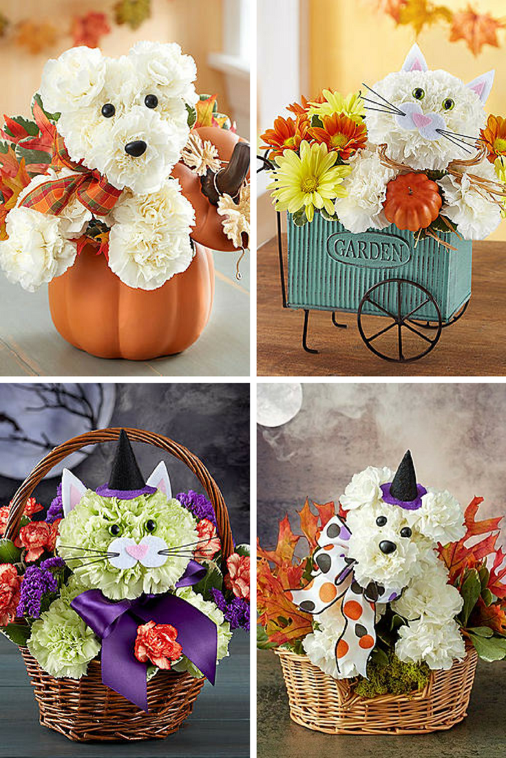 Mommy blog expert party animal fall fresh flower bouquets for about 1800flowers learn more about the complete line of floral arrangements to choose from including the charming dogs cats bears and bees in the izmirmasajfo Gallery