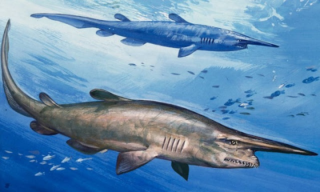 Ini 5 Ikan dengan Penampilan Paling Menyeramkan di Dunia