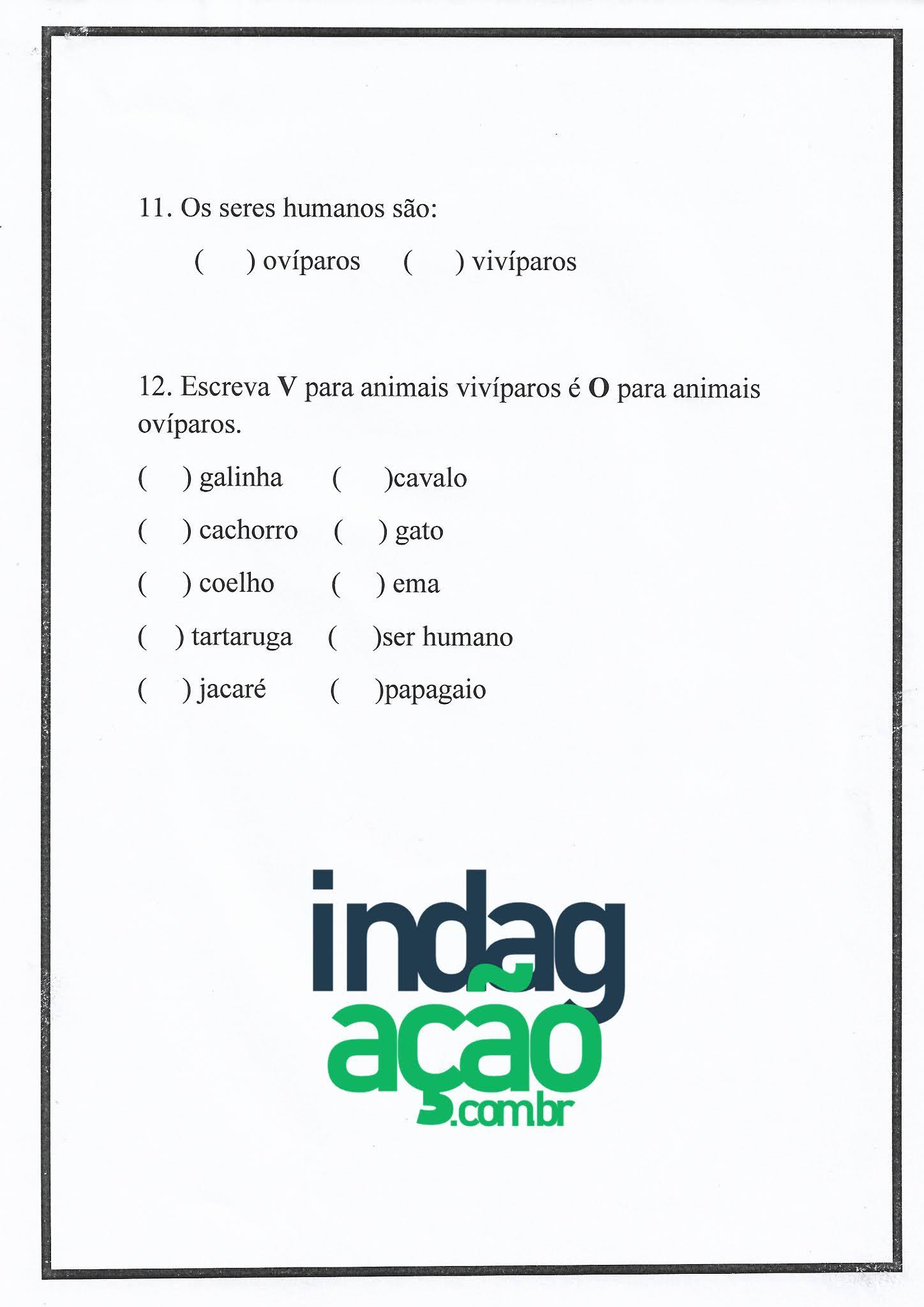 Atividade de Ciências: classificação dos animais