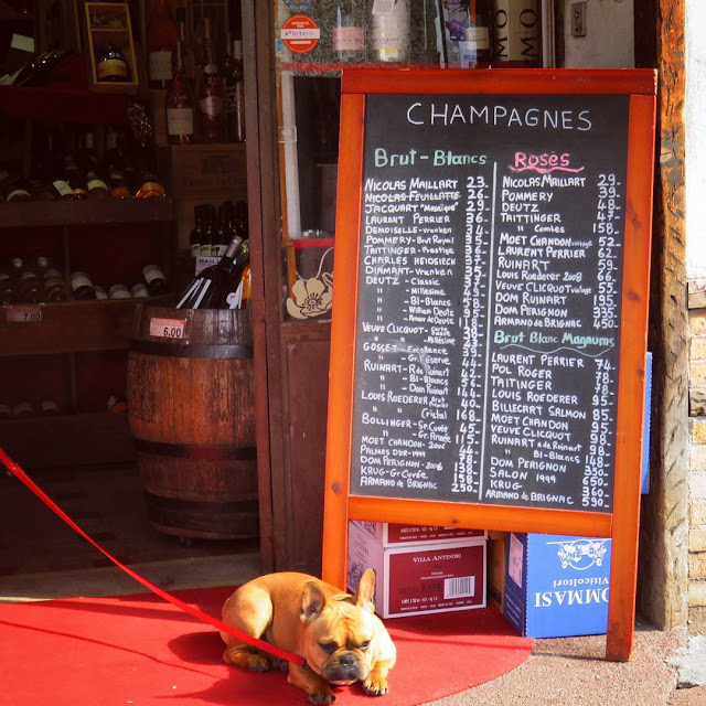 Nice Carnaval - Antibes - dog outside a wine shop