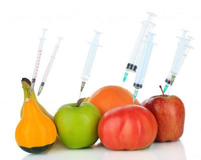 10 Contoh Makanan Rekayasa Genetika dan Manfaat serta Bahayanya bagi Tubuh Manusia