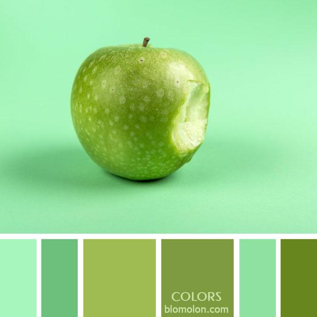 variedad_en_color_paletas_de_colores_73