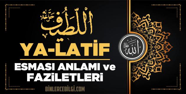 Allah'ın 99 ismi Esmaül Hüsna isimlerinden Ya-Latif isminin anlamı, fazileti, sırları, El-Latif Arapça-Türkçe okunuşu, Zikir günü ve adedi, ebced değeri
