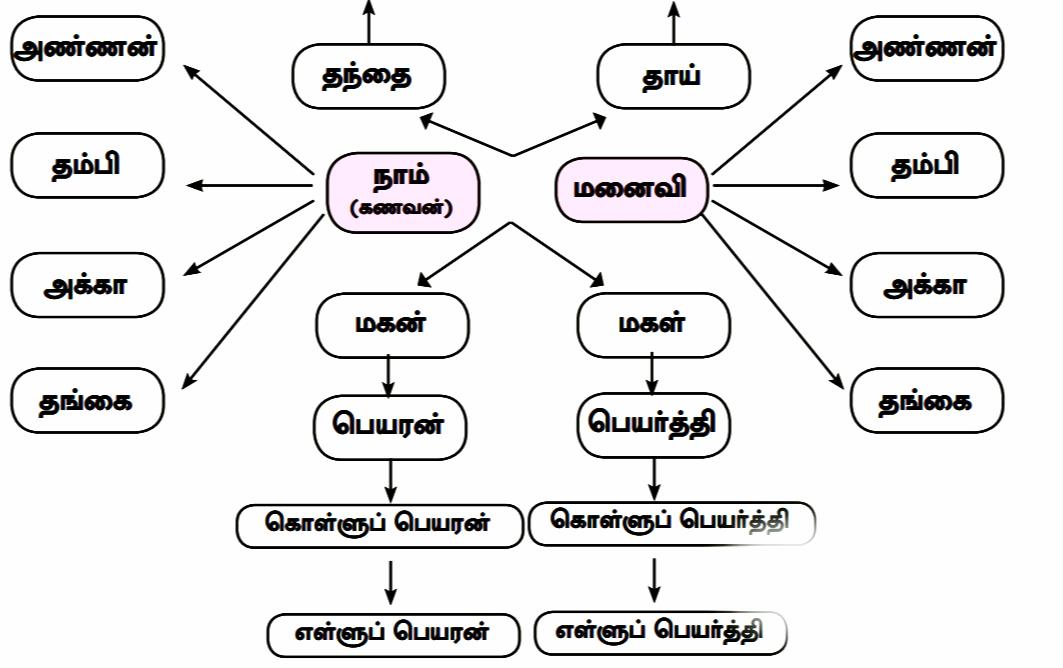 Samacheer Book 12th Tamil unit 3.1 தமிழர் குடும்ப முறை Book Answers Guide