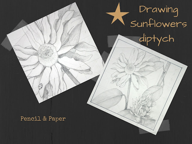 "Sunflower Diptych BOTTOM drawing for 12"" x 12"" canvas"