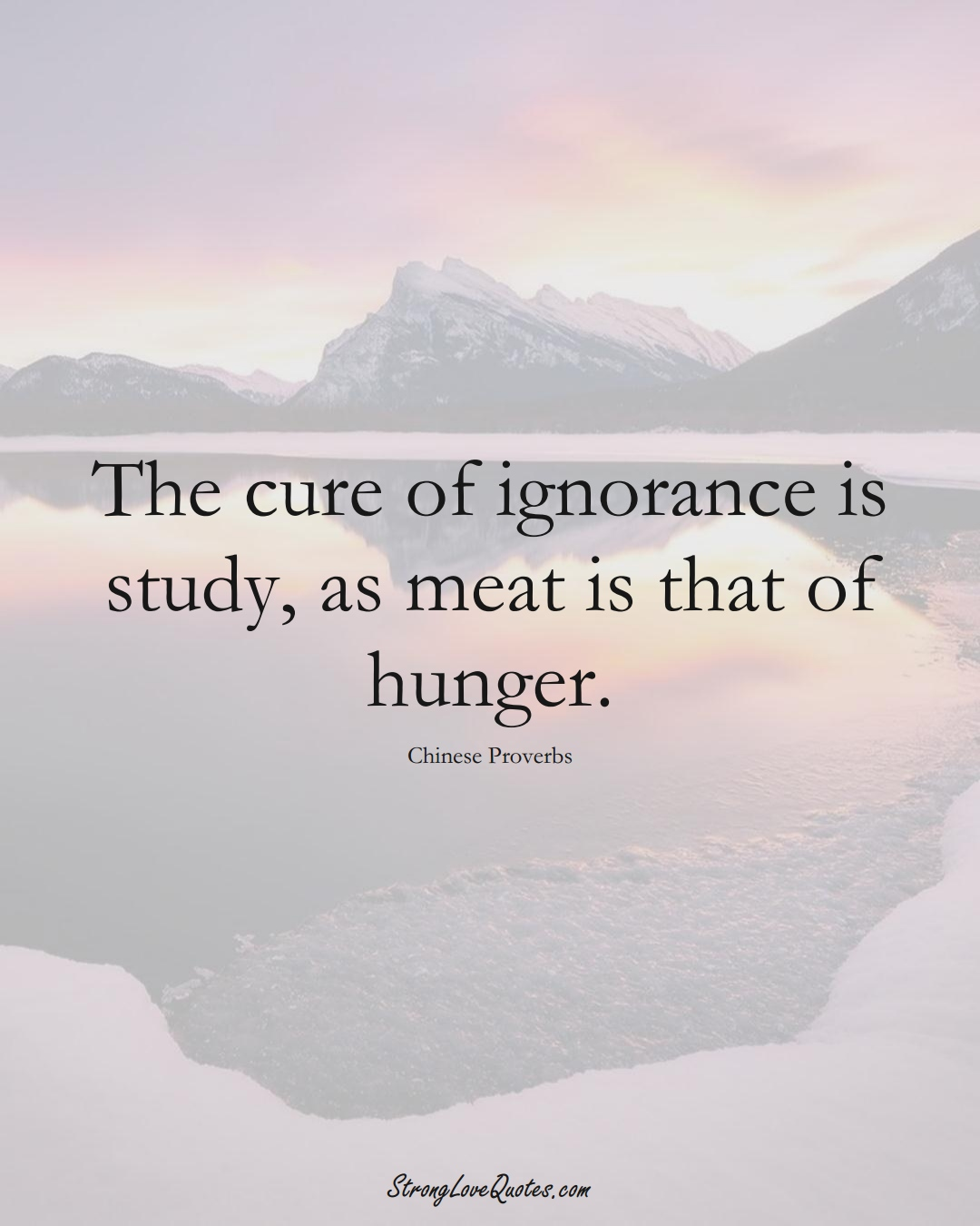 The cure of ignorance is study, as meat is that of hunger. (Chinese Sayings);  #AsianSayings