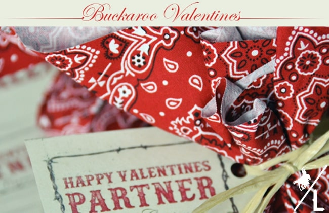 These cute homemade Buckaroo Valentines are easy to make and fun to give
