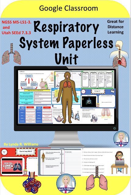 The Respiratory System Online Unit