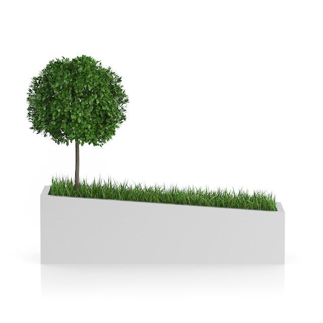 3D model free -  Plants_06