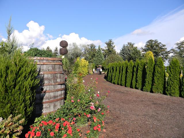 dekoracje ogrodów w Starym Dworze