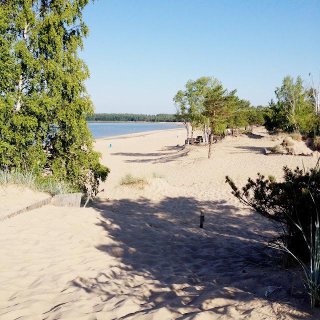 hiekkaranta, maisema, pensas