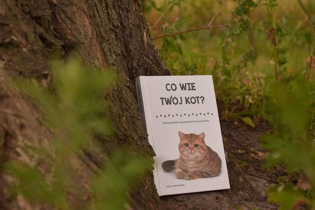 "Sally Morgan - ,,Co wie Twój kot ?"" (opinia)"