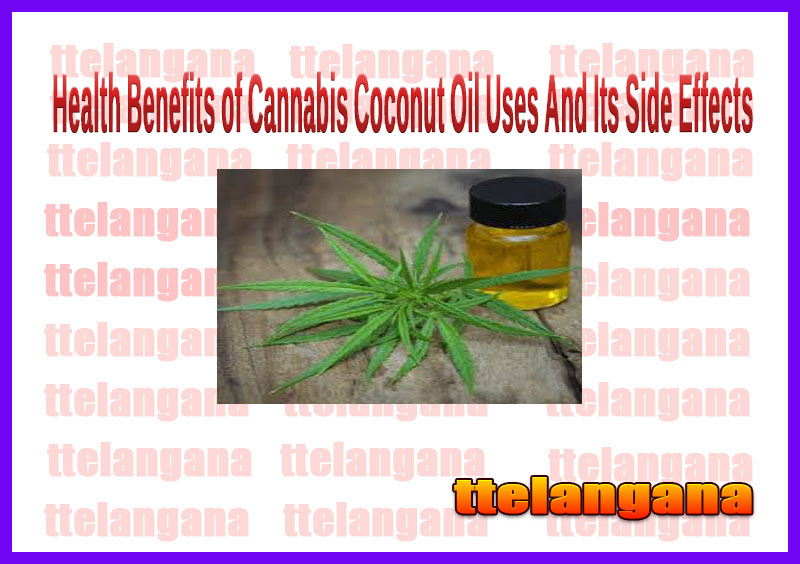 Health Benefits of Cannabis Coconut Oil Uses And Its Side Effects