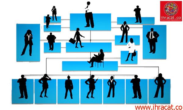 organizasyon şeması, fonksiyonel organizasyon