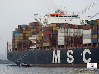 MSC Lily
