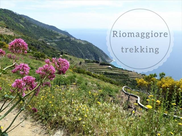 Panorama lungo sentiero Riomaggiore Colle del Telegrafo