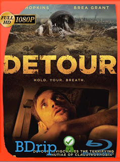 Detour (2014) BDRIP1080pLatino [GoogleDrive] SilvestreHD
