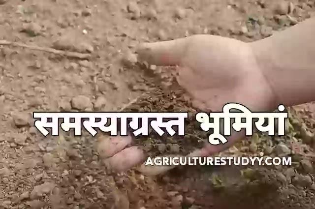 समस्याग्रस्त भूमियों का सुधार एवं उनमें फसल उत्पादन ( Reform of problematic lands and crop production in them )