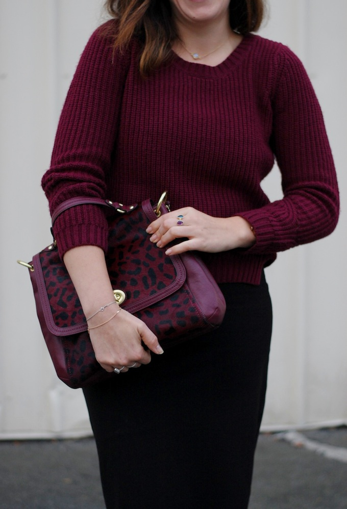 Le Château wool sweater, Le Château midi skirt and leopard Coach handbag.