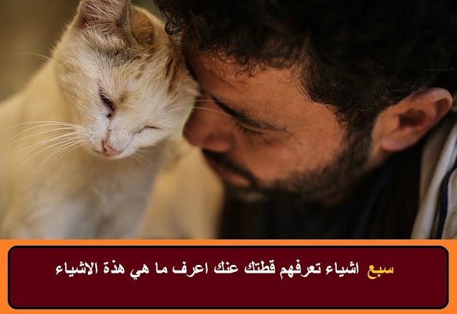 """""""قطتك تحبك"""" """"كيف تجعل قطتك تحبك"""" """"كيف تعرف قطتك تحبك"""" """"كيف تحبك قطتك"""" """"كيف تخلي قطتك تحبك"""" """"كيف تجعلين قطتك تحبك"""" """"ازاي تخلي قطتك تحبك"""" """"صوت يجعل قطتك تحبك"""" """"كيف تجعل قطتك تحب الماء"""" """"كيف تجعل قطك الجديد تحبك"""" """"كيف اجعل قطتي تحب قطة جديدة"""" """"كيف اجعل قطتي تحب الماء"""" """"كيف تعرف ان قطتك تحبك"""" """"كيف تعرف اذا قطتك تحبك"""" """"كيف تعلم ان قطتك تحبك"""" """"كيف تعرف اذا كانت قطتك تحبك"""" """"كيف تجعلين القطط تحبك"""" """"ازاي تخلي القطط تحبك"""" """"كيف تجعل قطة تحبك"""" """"كيفية جعل القطط تحبك"""" """"كيف تخلي القطط تحبك"""" """"كيف تخلي القطة تحبك"""" """"ازاي تخلي القط يحبك"""" """"ازاى تخلى الكلاب تحبك"""" """"ازاي تخلي واحده تحبك"""" """"كيف تجعل القطة تحبك"""" """"كيف تجعل قطة صغيرة تحبك"""" """"كيف تجعل قطط الشوارع تحبك"""" """"كيف تجعل القطة الصغيرة تحبك"""" """"كيفية جعل القطة تحبك"""" """"طريقة جعل القطط تحبك"""" """"كيفية جعل القطط تتزاوج"""" """"طريقة جعل القطة تحبك"""" """"طريقة جعل القطط تحب بعضها"""" """"جعل القطة تحبك"""" """"كيف تخلي الكلاب تحبك"""" """"كيف تجعل القطط تحبك"""" """"كيف تجعل القطط تحب الماء"""" """"كيف تخلي قطة تحبك"""" """"كيف تخلي القط يحبك"""" """"كيف تخلي قطك يحبك"""" """"ازاي اخلي القط يحبني"""" """"كيف تخلي واحده تحبك"""" """"ازاي تخلي وحده تحبك"""" """"ازاي تخلي حبيبتك تعشقك"""" """"كيفية جعل قطة تحبك"""" """"كيف تجعل الكلاب تحبك"""" """"كيف تجعل كلاب الشوارع تحبك"""" """"كيف اجعل القطط تحب بعضها"""" """"كيف تجعل القط يحبك"""" """"كيف تجعل القط يحبني"""" """"كيف تجعل قط يحبك"""" """"كيف تجعل القط يحب الماء"""" """"كيف تجعل قطك يحبك"""" """"كيف تجعل قطك يحب الماء"""" """"كيف اخلي القط يحبني"""" """"كيف اخلي قط الشارع يحبني"""""""