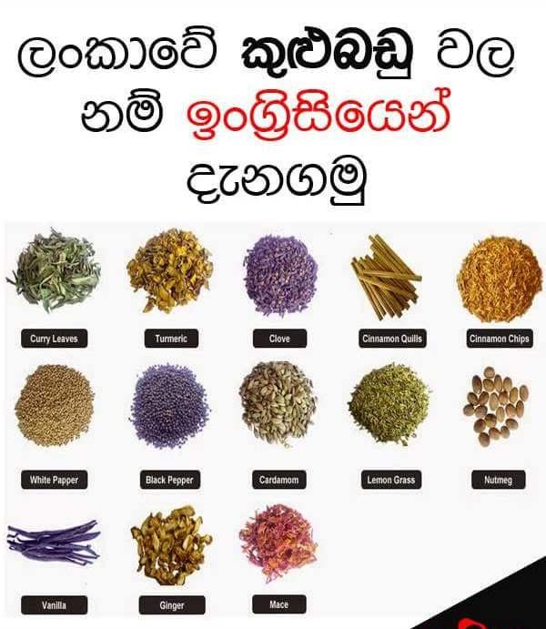 Sri Lankan Spices Names  Sandy Foods  Sri Lanka-1089