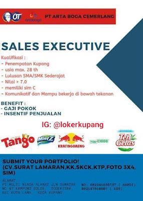 Lowongan Kerja PT Arta Boga Cemerlang Sebagai Sales Executive
